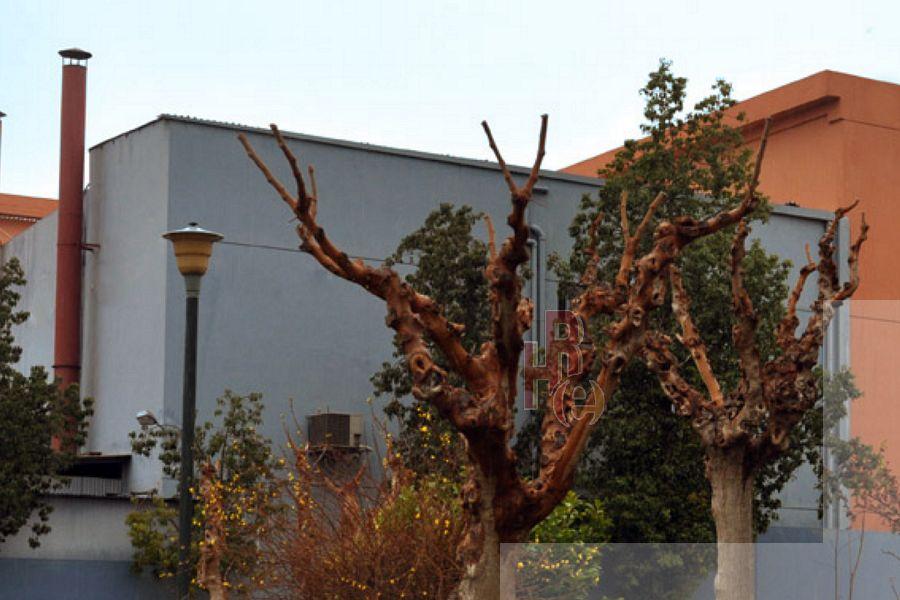 Βιομηχανικό κτίριο στο Περιστέρι στην περιοχή Θεολόγος